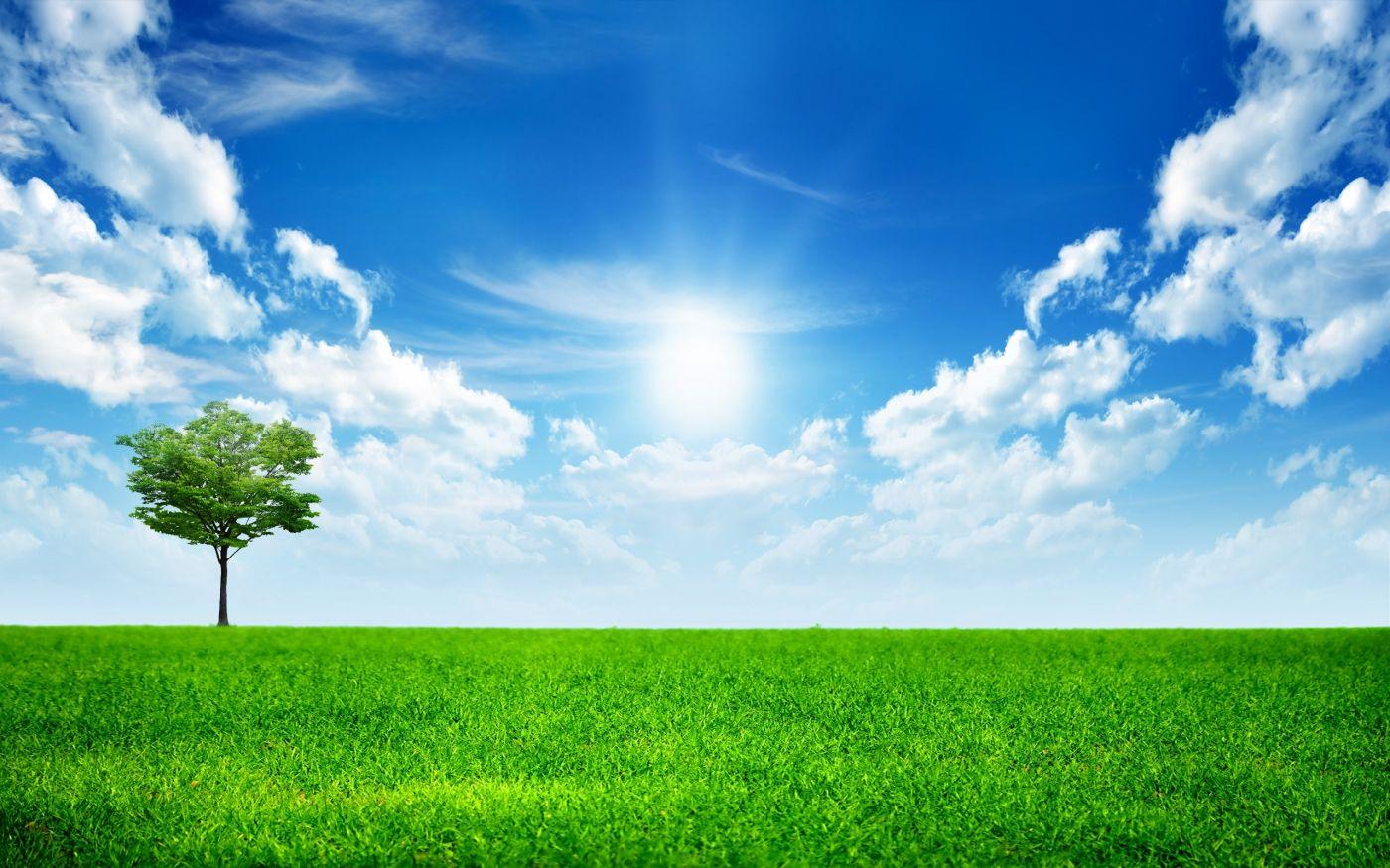 高清晰hd绿色大自然美景壁纸 手机移动版