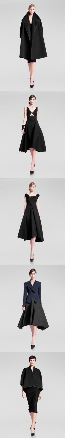 时尚茧状外衣件女装秀-纯粹的裙子和裁剪丝绸上衣