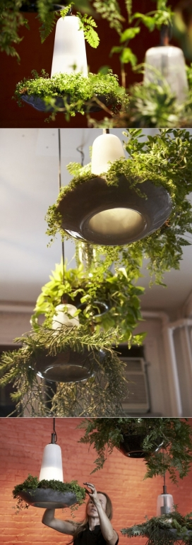 绿色园艺植物吊灯照明