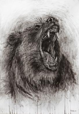 动物-木炭手绘插画
