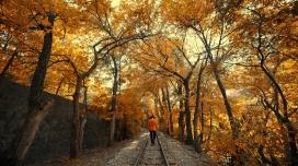 亚美尼亚埃里温铁路公园