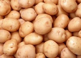 高清晰马铃薯土豆壁纸