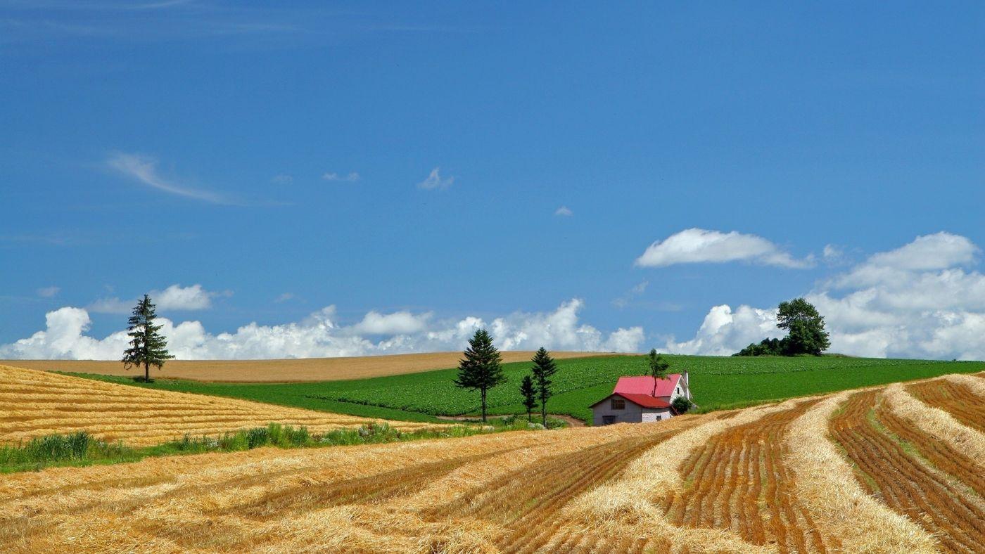 高清晰北海道小农场黄泥路壁纸 手机移动版