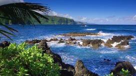 海洋热带岛屿
