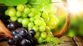新鲜的绿色提子与紫色葡萄水果