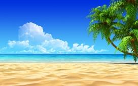 惊人的热带海滩
