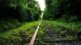 荒废的绿色铁路