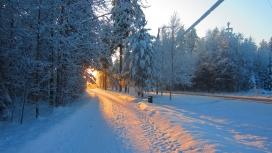 https://www.2008php.com/冬季阳光雪路壁纸