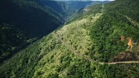 令人惊叹的绿色列车山