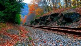 枫叶铁路壁纸