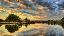 乌云下的树湖倒影壁纸