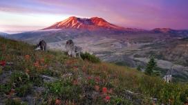 火山口山顶花卉树木