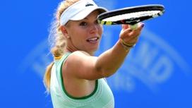 网球运动员沃兹尼亚奇