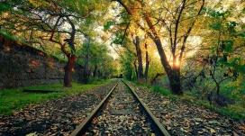 高清晰唯美落叶铁路壁纸