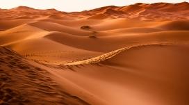 高清晰美丽的沙丘壁纸