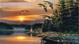 日落下的木露营鸭湖