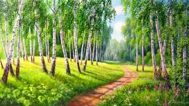 唯美的绿色树林小路