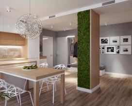 一个极简主义舒适的乌克兰ecostyle公寓