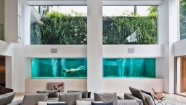 带透明游泳池的公寓
