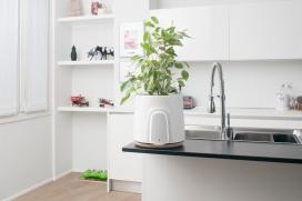 Clairy-智能自然空气净化器-您的家庭或办公室的智能自然空气净化器