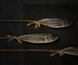 Food-食品干货摄影