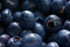 高清晰黑色蓝莓壁纸