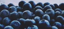 高清晰黑莓水果壁纸