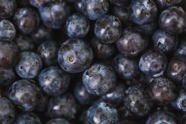 高清晰黑色蓝莓水果壁纸