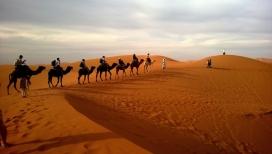 高清晰赶骆驼人壁纸