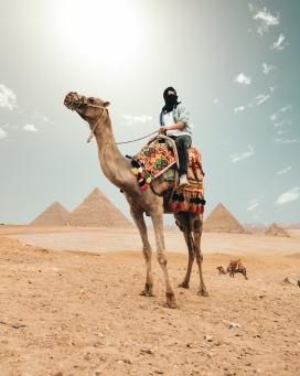 骑骆驼的中亚人