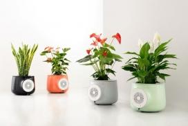使房屋保持绿色空气清洁的Clairy播种净化器