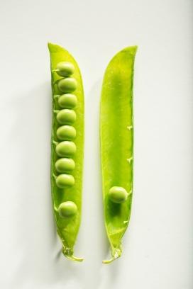 新鲜嫩绿的豌豆