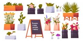 花店盆栽植物盆景素材