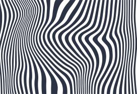 黑白斑马对角线波背景