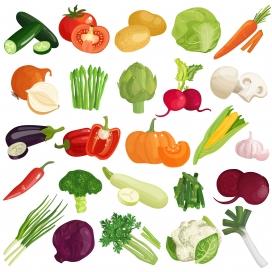 蔬菜水彩卡通矢量素材