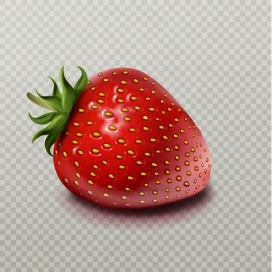 新鲜的草莓水果素材