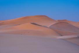 蓝天下的金色沙漠