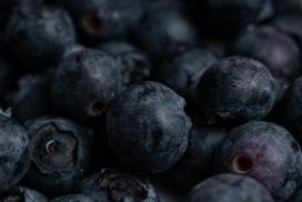 黑色蓝莓水果
