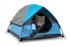 和猫一起露营的迷你帐篷