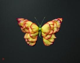 Natura Wildlife-纳图拉野生动物-花卉植物拼成的动物