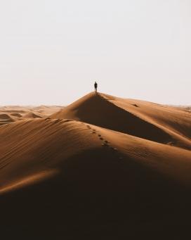 金色沙丘上的步行者