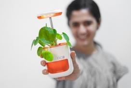 可以将手掌大小自浇草药连接到冰箱侧面的Pico种植机