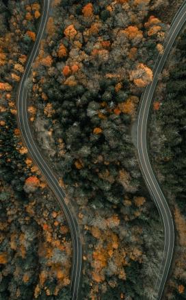 俯拍下的森林弯曲马路