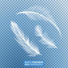 白色羽毛素材