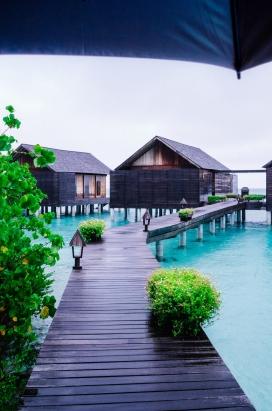 马尔代夫的木质路