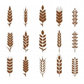 小麦剪影集合