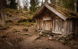 森林中的木质房屋