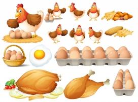 鸡肉鸡蛋素材