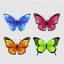 五彩蝴蝶素材