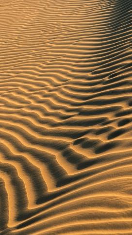 十分漂亮的金色波浪线沙漠